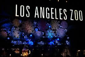 Zoo Lights Schedule by Los Angeles Holiday Activities U0026 Events Guide No Back Home