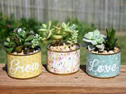 Indoor Succulent Container Gardens How To Grow Succulents In A Pot Without Drainage Holes World Of