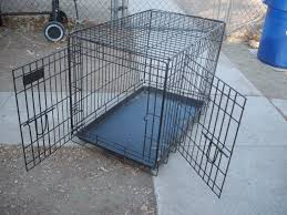 lesson 481 u2013 why every chicken owner needs to get a dog crate