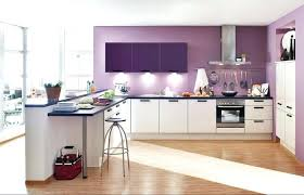 cuisine couleur violet cuisine couleur violet cuisine idee couleur cuisine violet cethosia me