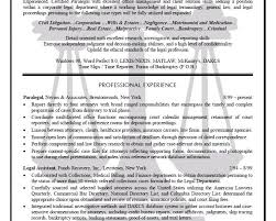 Paralegal Resume Sample by Download Paralegal Resume Sample Haadyaooverbayresort Com