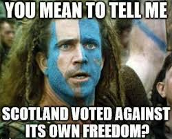 Braveheart Freedom Meme - no freedom for you meme by ashy101 memedroid