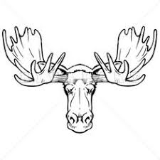 how to draw a moose face group 56