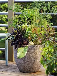 Herb Container Gardening Ideas 35 Herb Container Gardens Pots Planters Saturday Inspiration