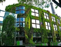 Verticle Gardening by Urban Vertical Gardening Xtsvrsc Decorating Clear