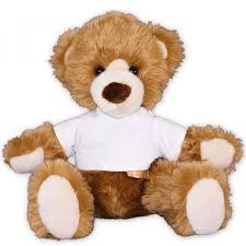teddy delivery 60 best stuffed animals delivery images on