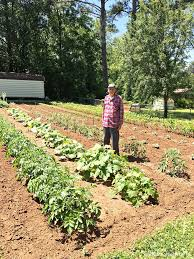 that beautiful vegetable garden southern hospitality