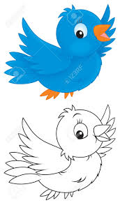 little blue bird stock photo picture and royalty free image