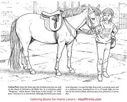 coloring books fun pack includes horses