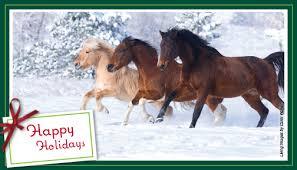 printable horse christmas cards holiday cards morris animal foundation