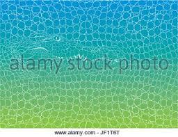 crocodile skin pattern alligator skin seamless texture stock