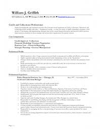 Travel Agent Resume Sample by Cover Letter Collection Agent Resume Collection Agent Duties