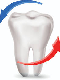 dental design amusing dental design elements vector 03 millions vectors