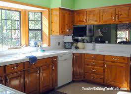Spray Paint Kitchen Cabinets by Kitchen Cabinet Hardware Oil Rubbed Bronze Home Decoration Ideas
