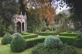 irish native plants required reading the irish garden gardenista