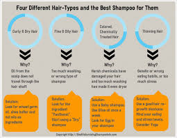 Hair Types by Four Different Hair Types And The Best Shoo For Them Visual Ly