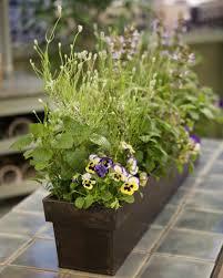 gardening projects martha stewart
