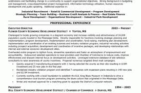 Human Resources Resume Objective Examples by Human Resources Resume Objective Examples Resume Human Resources