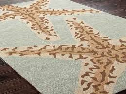 Pottery Barn Area Rugs Clearance 67 Most Brilliant Starfish Rug Pottery Barn Coastal Area Rugs