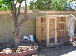chicken coop garden gidget u0027s blog