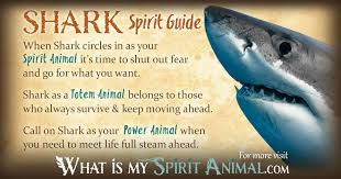 shark symbolism meaning spirit totem power