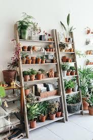 Best Plants For Desk by Plant Stand Display Ladder Shelves Shelf For Plants Bestdeas On
