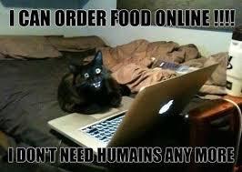 Free Memes Online - funny cat memes online cat meme share this funny cat meme on