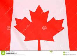 Red White Flag Canadian Maple Leaf Red And White Flag Stock Image Image 40687155