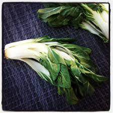 cuisiner les cotes de bettes les côtes de blettes fiche produit recettes conseil d achat et
