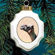 camel head christmas ornament camels as collection pinterest