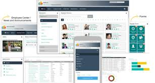 sharepoint intranet templates on bizportals 365