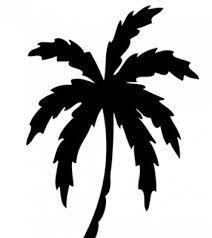 top 10 palm tree designs