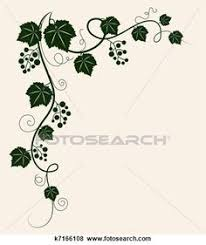 abstract floral vine grape ornament vector ornaments