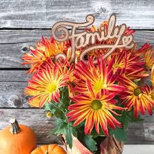 thanksgiving projects to make with your cricut 100 directions