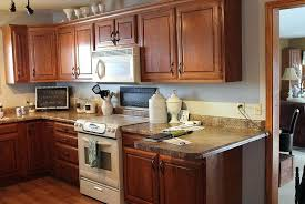 ideas for redoing kitchen cabinets redo kitchen cabinets bloomingcactus me