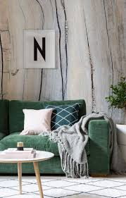 best 25 green couch decor ideas on pinterest living room decor