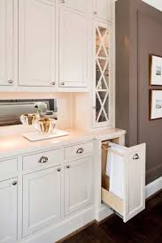Hidden Towel Rack Design Ideas - Kitchen cabinet towel rack