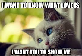 Sad Memes About Love - i want to know what love is i want you to show me sad cat