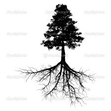 the 25 best roots tattoo ideas on pinterest tree tattoos white