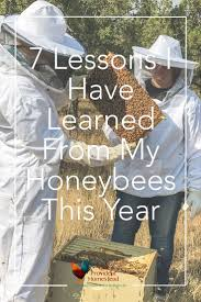 298 best i honeybees images on pinterest beekeeping honey