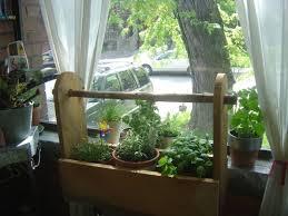 window herb gardens window herb garden