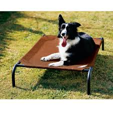 coolaroo steel frame pet bed at brookstone u2014buy now