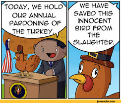 turkey theodd1sout birds thanksgiving comics