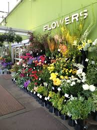 flower wholesale debra prinzing post flowers podcast grocery floral with