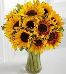 sunflower arrangements sunflower arrangement carithers flowers