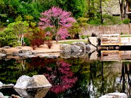 Colorado Botanical Gardens Denver Botanic Gardens Year Oasis
