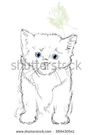 vector illustration adorable cat white butterfly stock vector