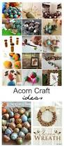 acorn craft ideas the idea room