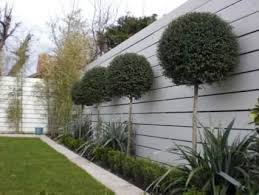 best 25 grey fence paint ideas on pinterest garden fence paint