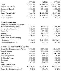 healthcare software company business plan executive summary